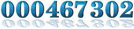 hitwebcounter.com